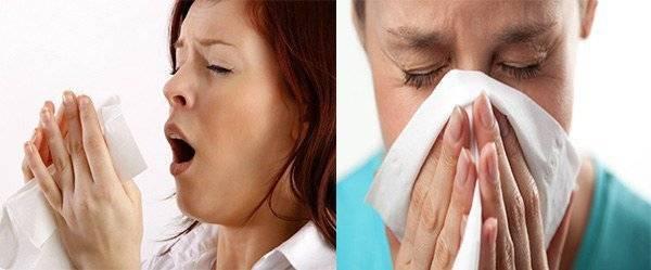 Аллергия на пылевого клеща у ребенка