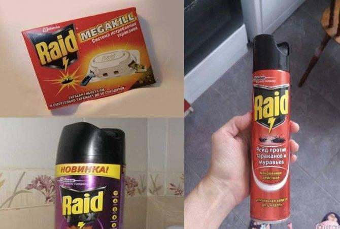 Рейд против тараканов – битва до последнего вредителя