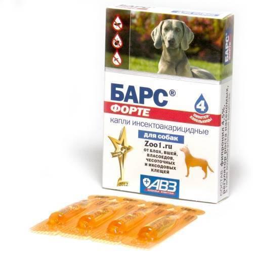Как правильно применять препарат «барс форте» для защиты собак от паразитов