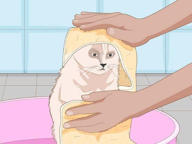 Как обрабатывать кошек и собак дегтярным мылом от блох