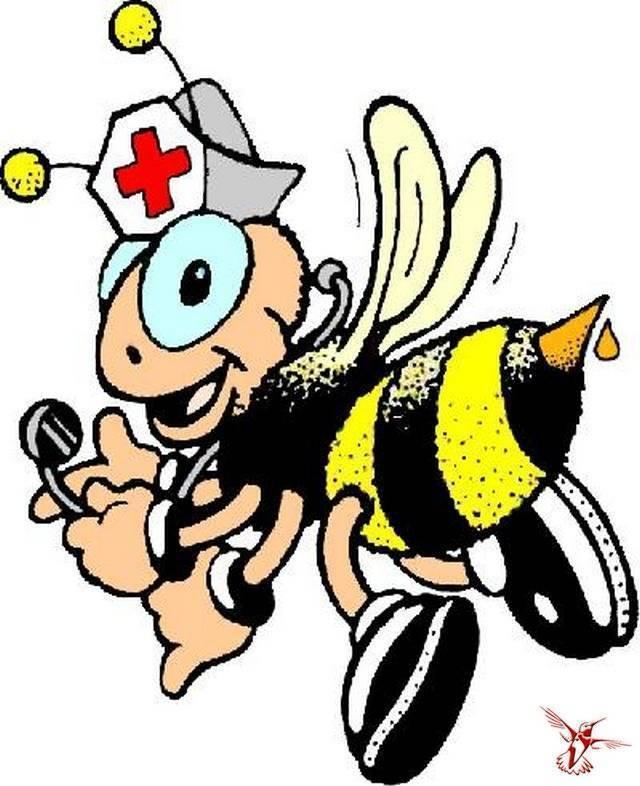 Интересные факты о пчелах для детей