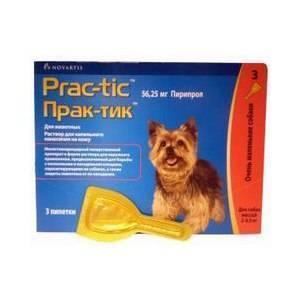 Капли «практик» от клещей для собак: инструкция по применению