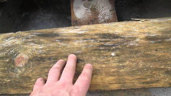 Как избавиться от конденсата и сырости в погребе или подвале
