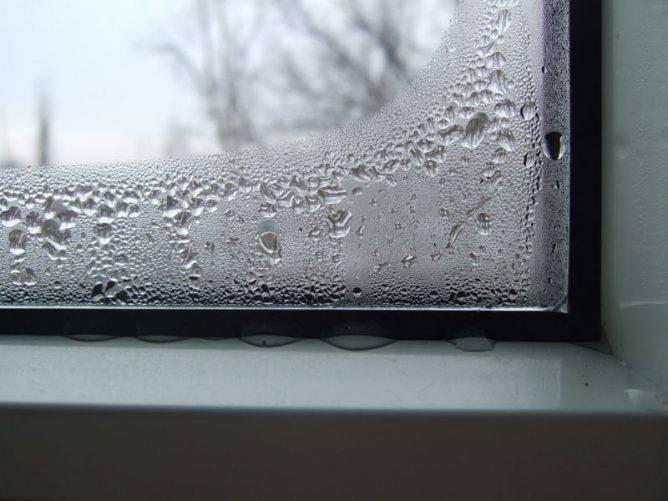 Борьба с плесенью на пластиковых окнах: средства против грибка