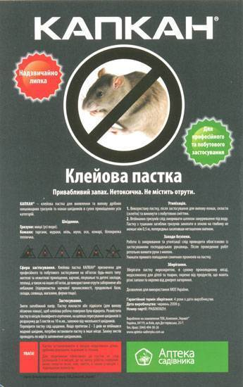 Какие ловушки для крыс использовать? как сделать их самостоятельно?