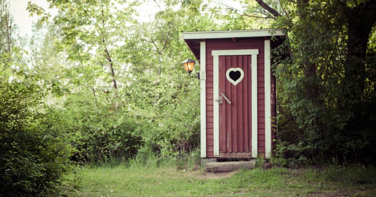 Как избавиться от мух в туалете на улице