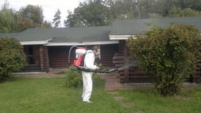 Лучшие способы борьбы с комарами на даче