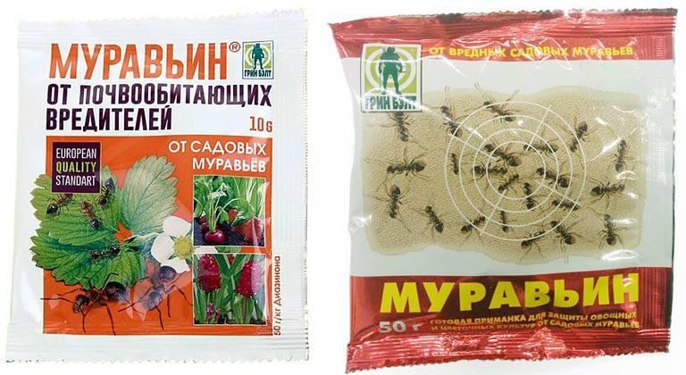 Как использовать муравьин от садовых муравьев