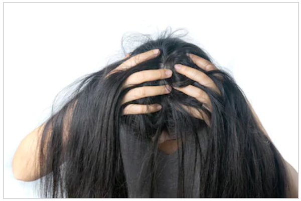 Живут ли вши на окрашенных волосах, могут ли завестись?