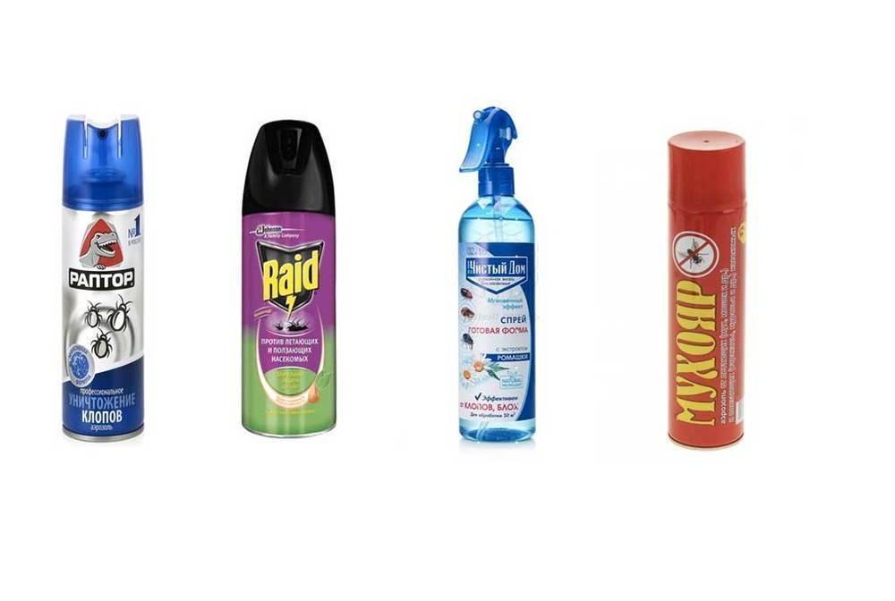 Легкий способ избавления от клопов с помощью средства «чистый дом»