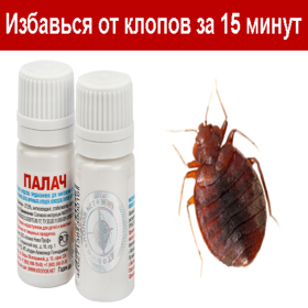 Смерть клопам: инсектицид палач от надоедливых паразитов