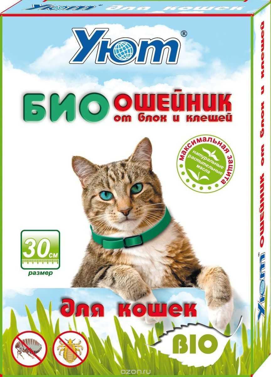 Как действует противоблошиный ошейник для кошек