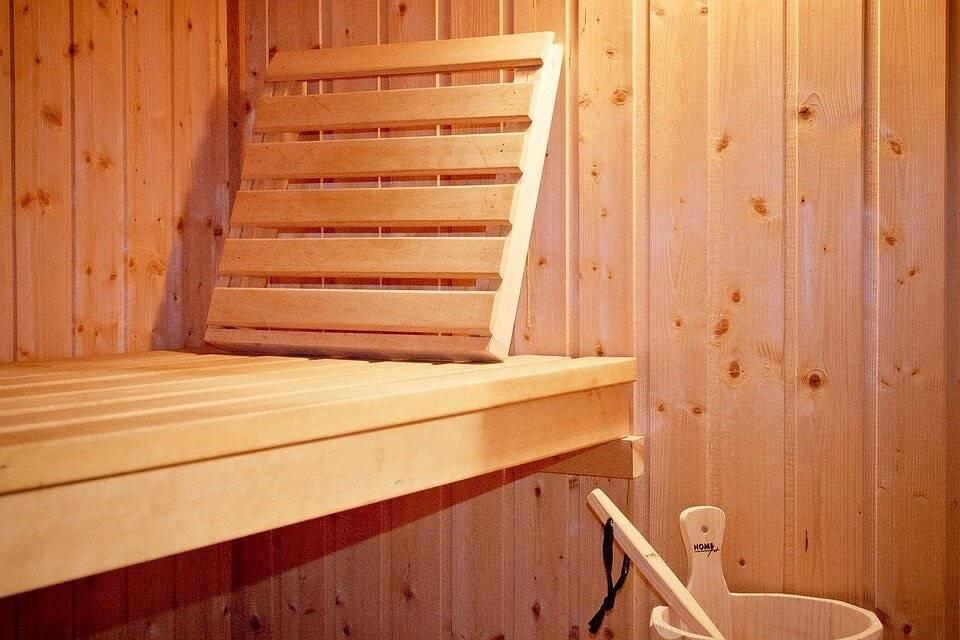 Жук-точильщик в деревянном доме – как избавиться от древоточца навсегда