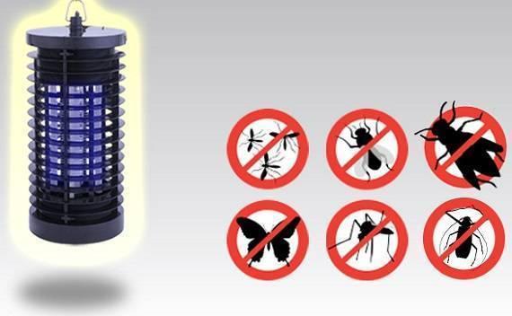 Лето без кровососов? уничтожитель комаров!