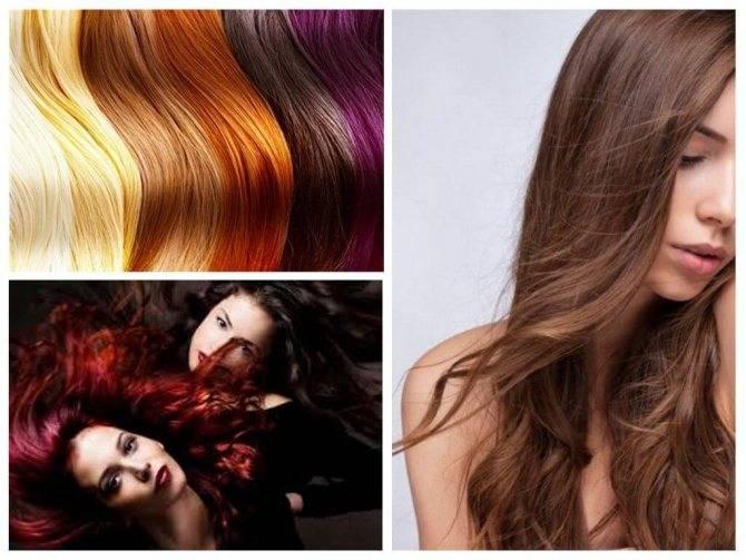 Не знаете, убивает ли краска для волос вшей и гнид? как правильно провести процедуру, чтобы добиться результата?