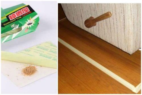 Как избавиться от клопов в квартире раз и навсегда