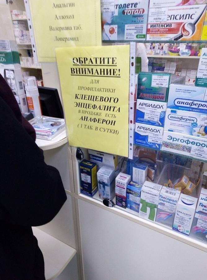 Лекарственные средства при укусе клеща: как избежать осложнений
