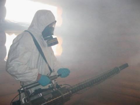Суть метода уничтожения клопов горячим туманом