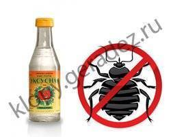 Уксус против клопов: простое средство защиты от укусов насекомых
