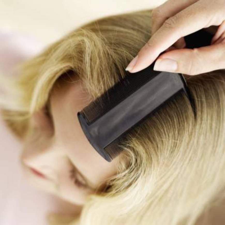 Погибают ли вши при окрашивании волос?
