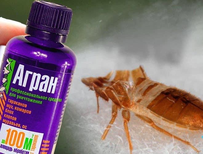 Как правильно применять агран от тараканов, и насколько он эффективен?