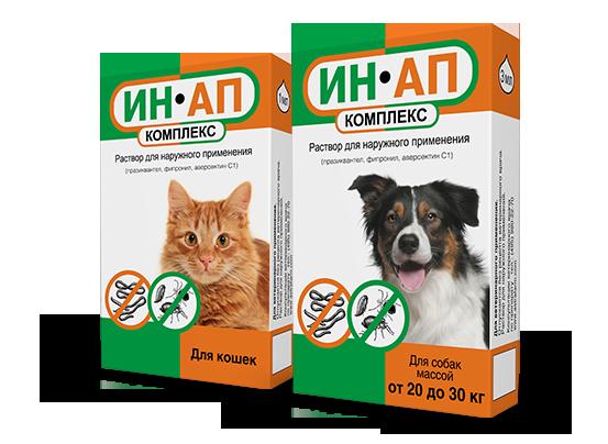 Какие бывают капли от блох и клещей для кошек: выбор и применение