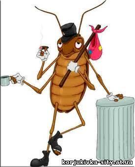 Тараканы: почему их называют стасиками, и другие интересные факты из их жизни