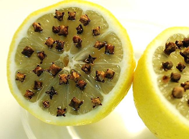 Народные средства от комаров и мошек на природе и дома