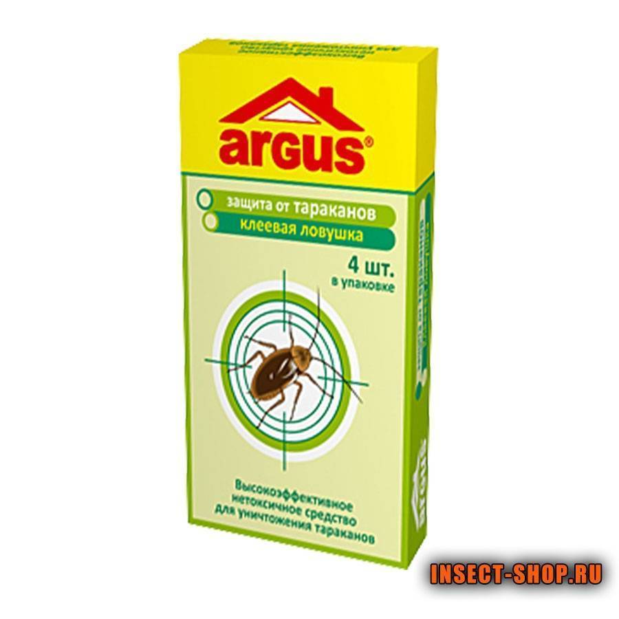 10 самых эффективных ловушек для тараканов