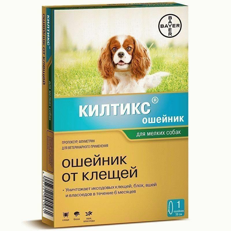 ТОП-11 лучших средств для собак от блох и клещей (таблетки, капли, спреи, ошейники)
