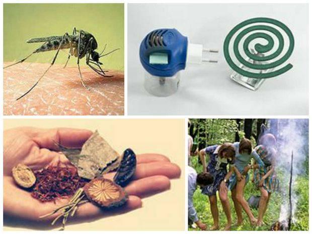 Избавиться от комаров в квартире и доме — можно!