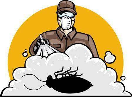 Как использовать «холодный туман» от тараканов