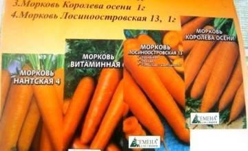 Как избавиться от тли на моркови