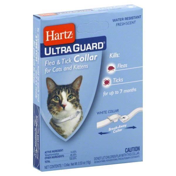 Ошейник для кошек и котов от блох, клещей — топ-3 лучших