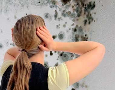 Как избавиться от грибка и плесени в погребе: средства, советы, видео