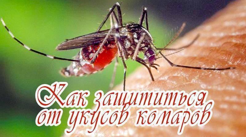 Использование народных рецептов от комаров