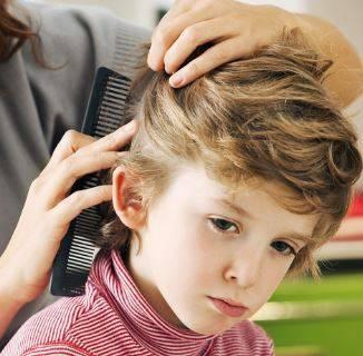 Алгоритм обработки волосистой части головы пациента при педикулезе алгоритм