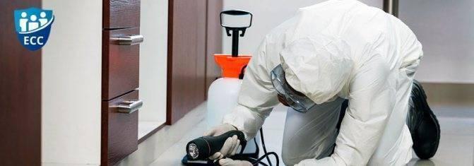Как правильно проводить дезинфекцию помещения — настоящая находка в условиях карантина
