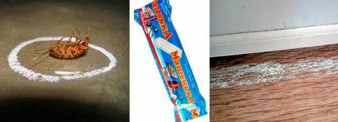 Мелок машенька от тараканов: применение и отзывы