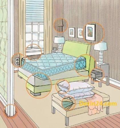 Обработка квартиры от клопов