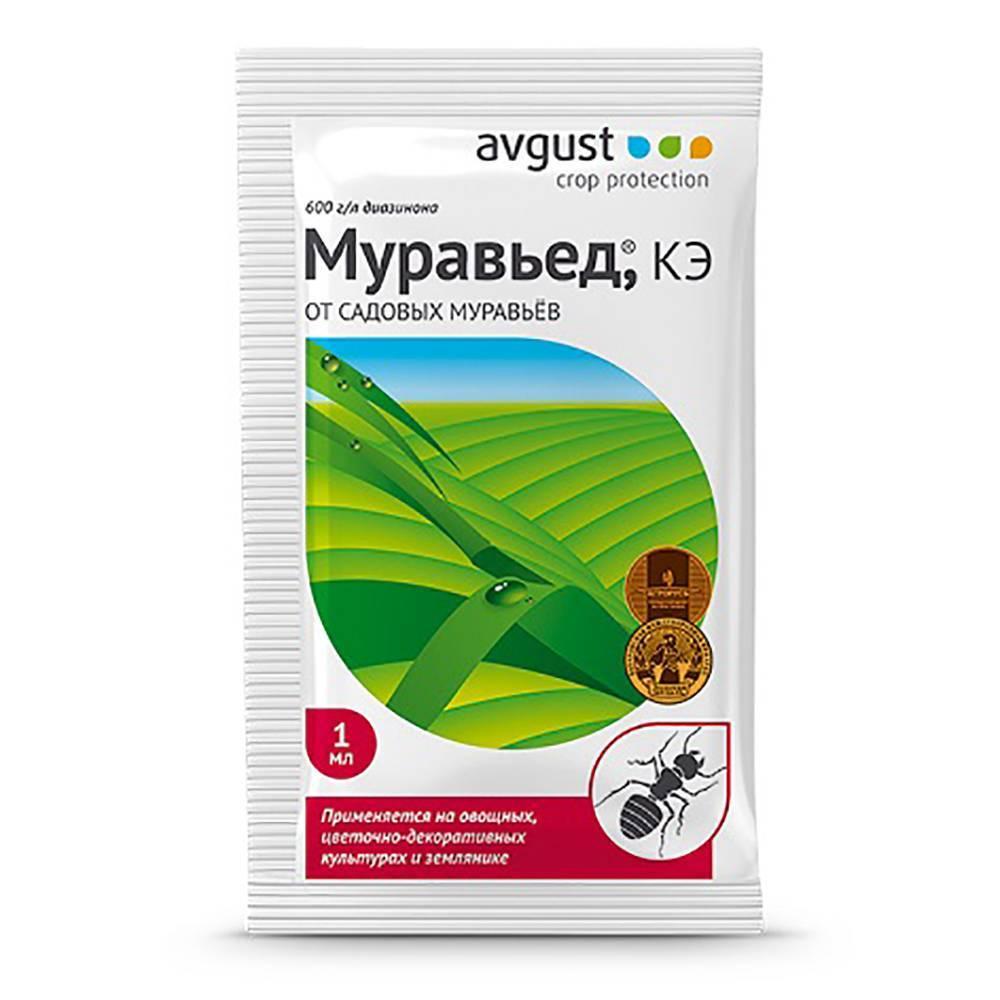«муравьин» 10 г: инструкция по применению препарата от муравьев
