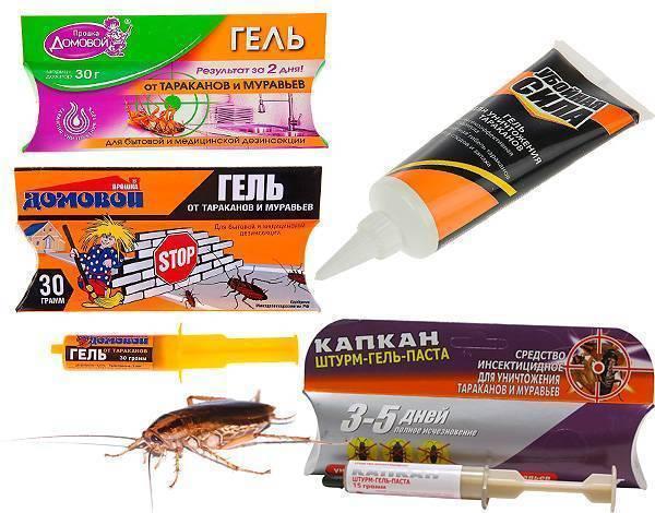Гели от тараканов – отзывы и обзор
