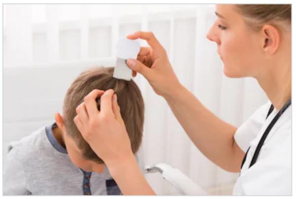 Педикулез у детей – причины возникновения, признаки, проявления, методы терапии и профилактики