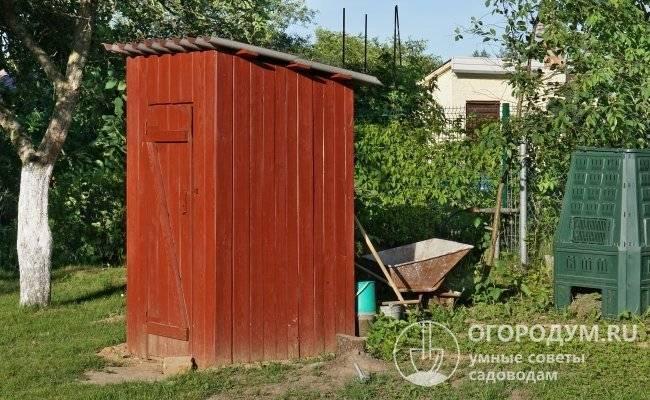 Туалетная муха: химические, народные средства борьбы