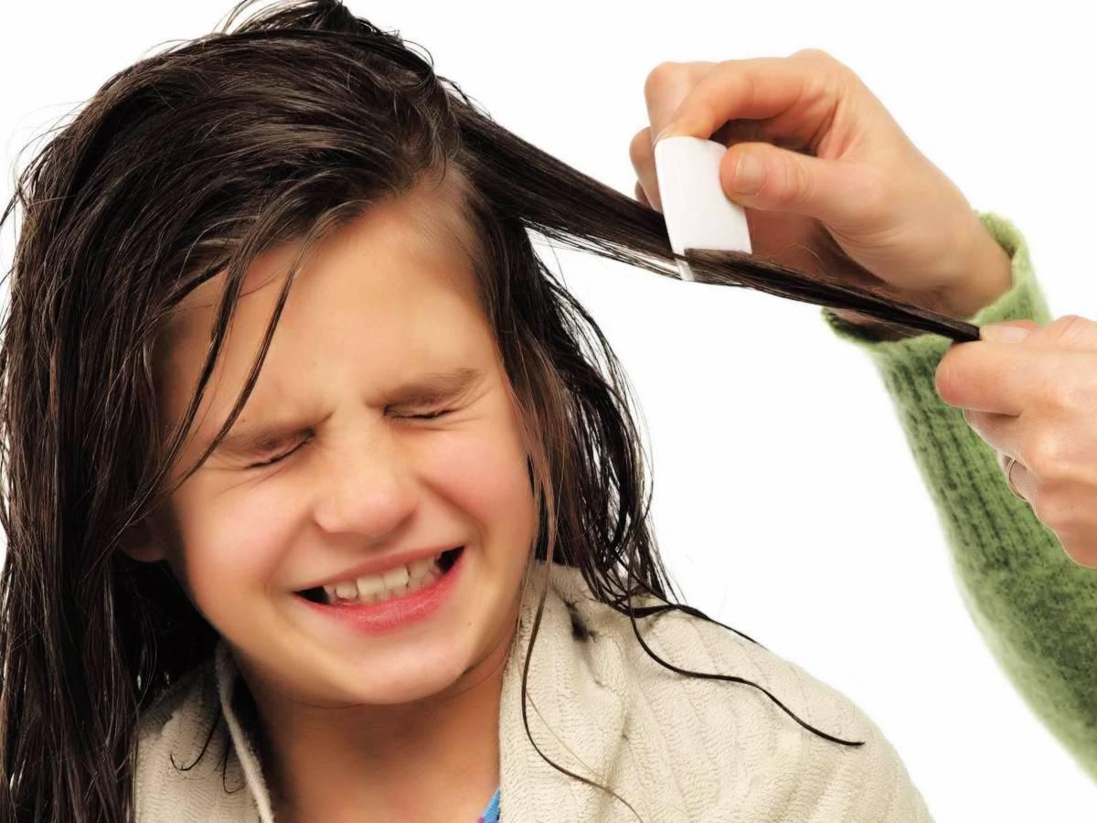 Как избавиться от вшей и гнид навсегда в домашних условиях за 1 день