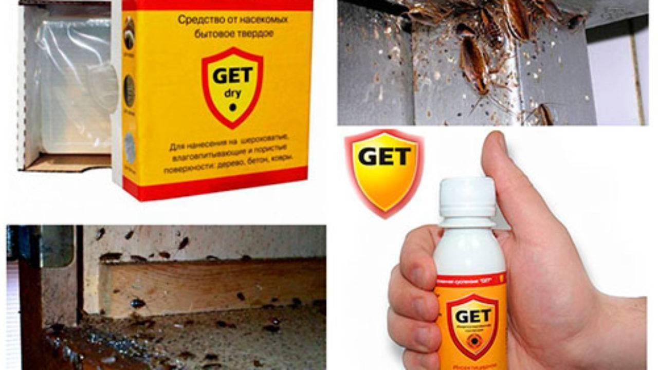 Get от тараканов: помогает ли он в борьбе с паразитами?