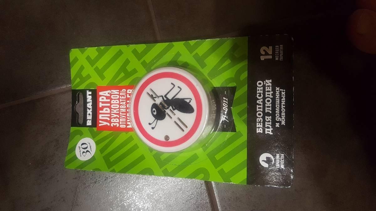 Об ультразвуковом отпугивателе муравьев