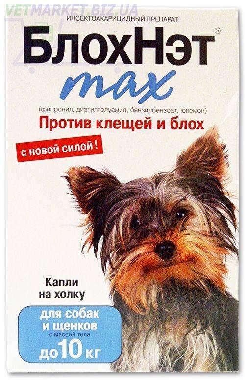 Блохнэт для кошек и собак