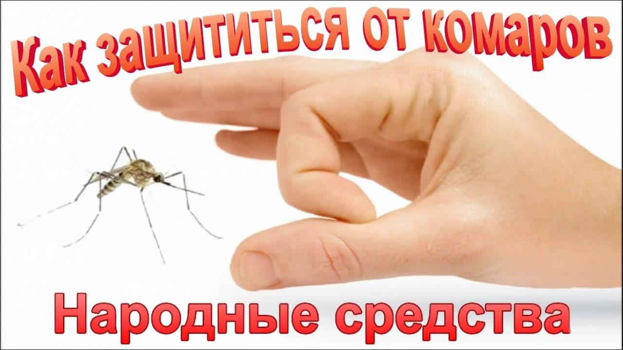 Какие средства помогут избавиться от комаров дома и на улице