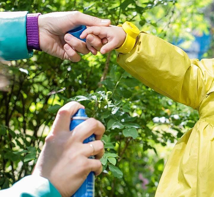 Как защититься от мошек на природе: народные средства своими руками